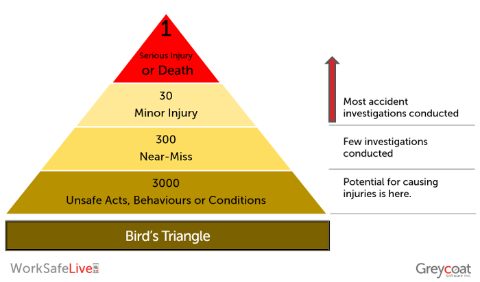 Birds Triangle